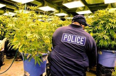 Police Officer Dealt Marijuana He Kept In Storage