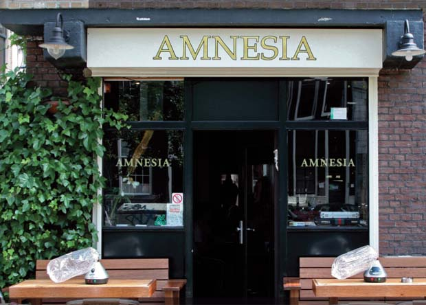 Amnesia Coffeeshop – Amsterdam