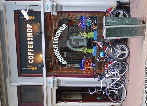 Arabica Lounge Coffeeshop Amsterdam - Weed Recommend