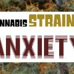 Cannabis Strains For Anxiety - Weed Recommend