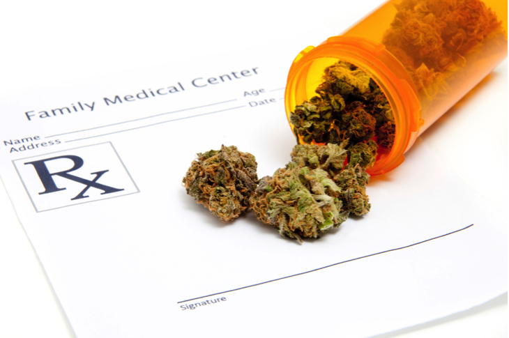 Cannabis Protects The Brain From Traumatic Injuries And Concussions, Study Finds
