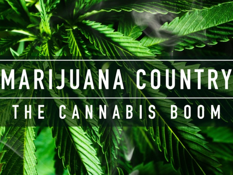 Marijuana Country: The Cannabis Boom Documentary