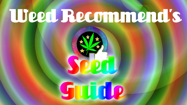 Beginners Guide To Buying Cannabis Seeds