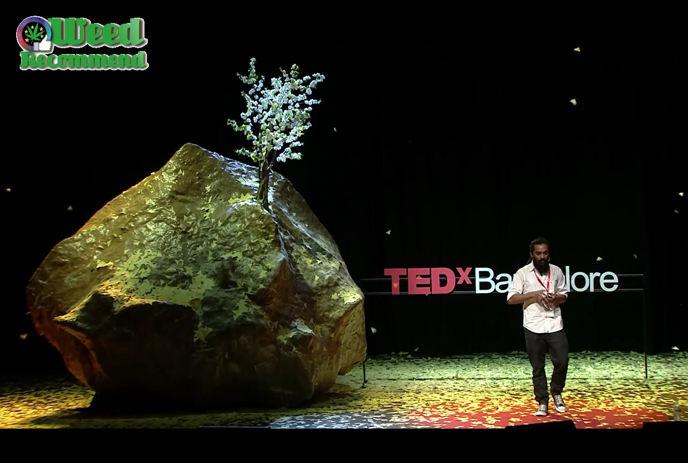 Medical Marijuana: The Ultimate Disease Defeating Drug | Viki Vaurora | TED x Bangalore