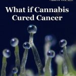 What If Cannabis Cured Cancer - 2011 Recommended Documentary