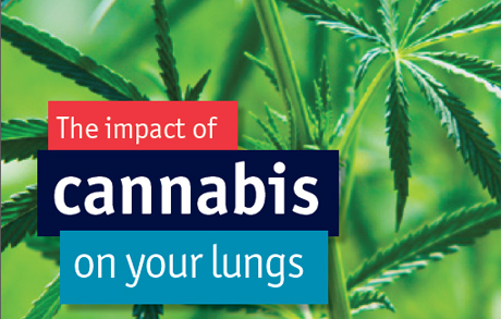 Impact of smoking marijuana regularly on your lungs for Does fish oil make you poop