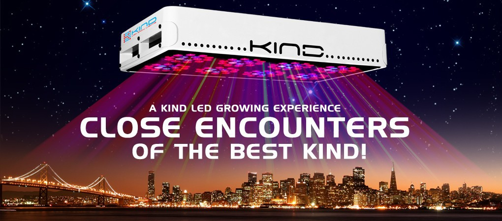 Weed Recommend: Kind LED Grow Lights