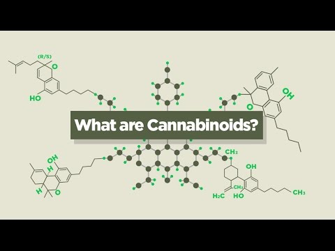 What are Cannabinoids ???